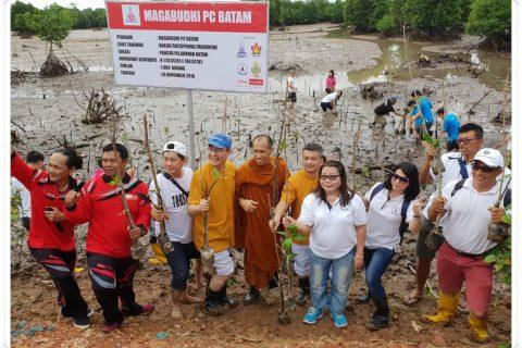Magabudhi PC Kota Batam Melaksanakan Penanaman Pohon Bakau
